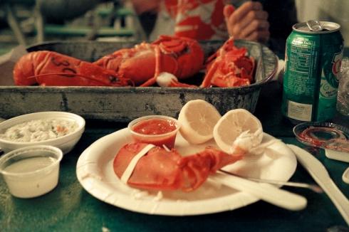 Nikon_BarHarbor_lobster_18FEB2013-8