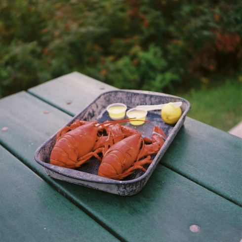 Yashica_BarHarbor_lobster_18FEB2013-1